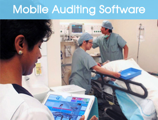 Mobile Auditing Software